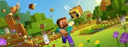 """Stage d'été COMPLET """"Autour de Minecraft"""" 7-13 ans"""